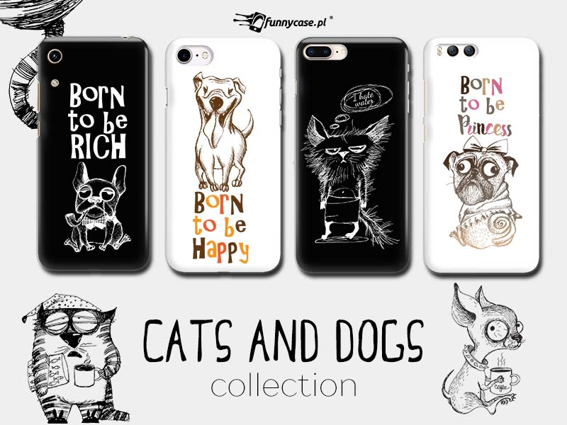 CATS AND DOGS